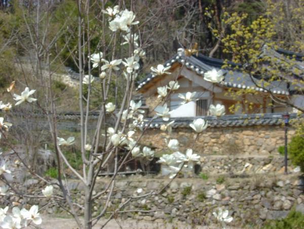 house266.jpg